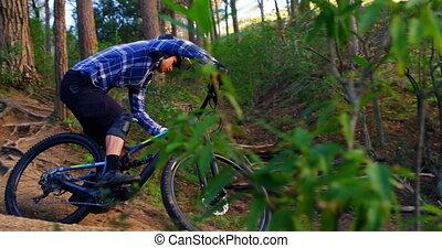 4k, rijdende fiets, man, bos