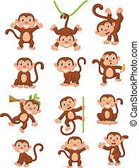 aap, vrolijke , set, verzameling, spotprent