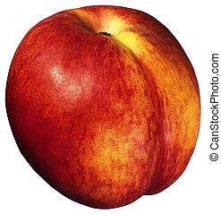 abrikoos, close-up, witte , helder, achtergrond