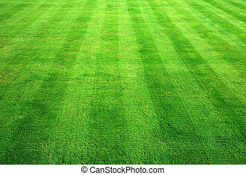 achtergrond., gras, groene, bowling