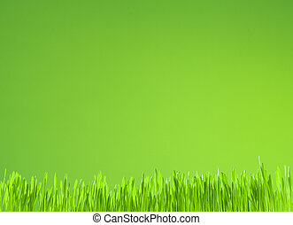 achtergrond, groei, groene, schoonmaken, fris, gras