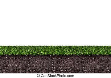achtergrond, terrein, vertolking, witte , groen gras