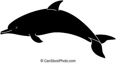 achtergrond., witte , dolfijn, silhouette