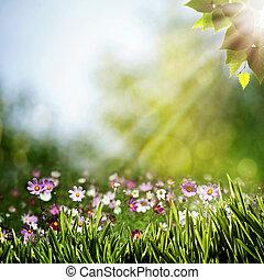 achtergronden, abstract, bloemen, natuurlijke schoonheid