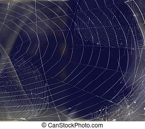 achtergronden, spiderweb