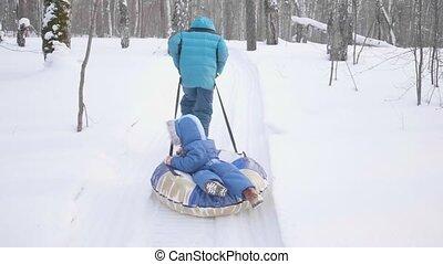 activiteiten, wandelende, buiten, winter, twee, wandeling, park., sleigh., paardrijden, kinderen