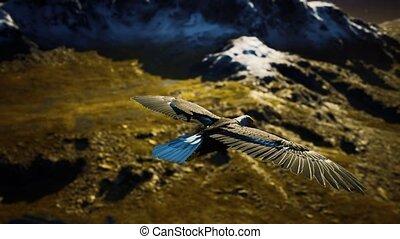 adelaar, alaskan bergen, kaal, vlucht, motie, amerikaan, vertragen, op