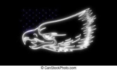 adelaar, amerikaan, animatie, video, symbool