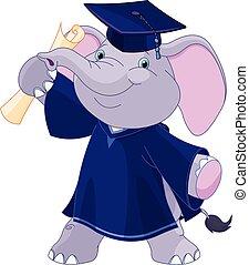 afgestudeerdeen, elefant