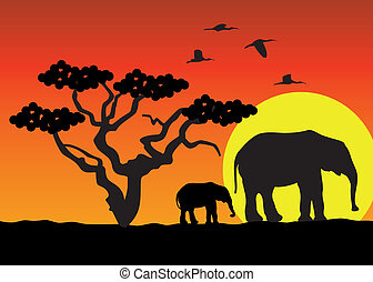 afrika, olifanten