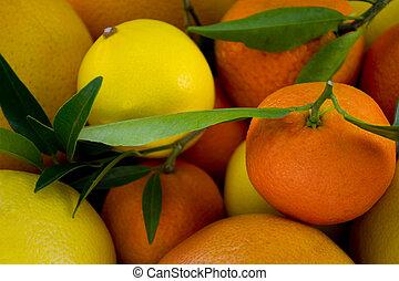 afsluiten, citric, op