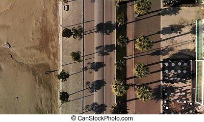 afsluiten, vehicles., op, bomen, palm top, dons, aanzicht, wegen, weinig, op