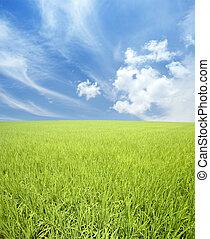 akker, groene hemel