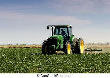 akker, ploegen, farmer