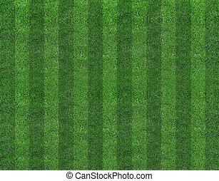 akker, voetbal, gras, groene