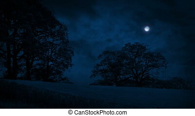 akker, voorbijgaand, wolken, bomen, nacht