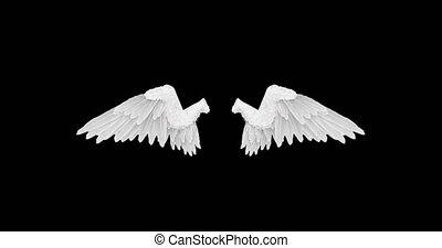 alfa, witte , vleugels, engel, vaart