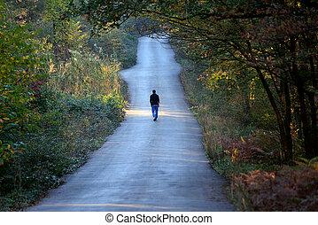alleen, wandelende, bos, straat, man