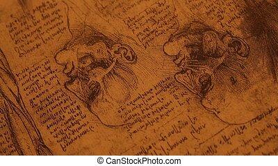 anatomie, kunst