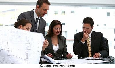 architecten, plannen, het kijken, vier