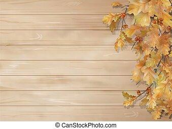 autumn leaves, eik, achtergrond