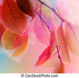 autumn leaves, ontwerp