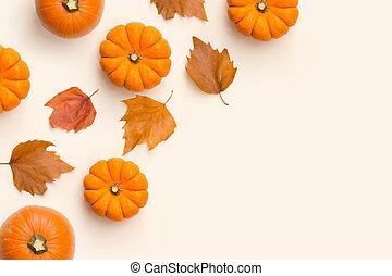 autumn leaves, pompoennen, samenstelling, herfst