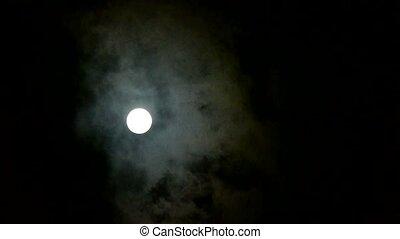avond lucht, maan, bewolkt, volle