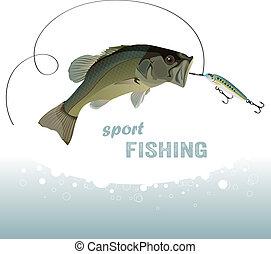 baars, visserij