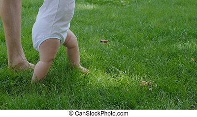 baby, vader, hulp, leren, wandeling