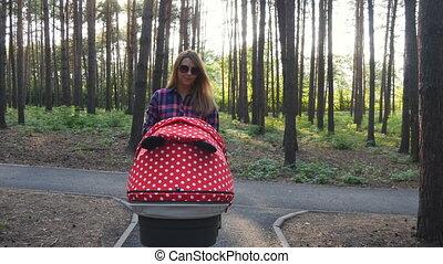 baby, wandelende, buggy, park, moeder