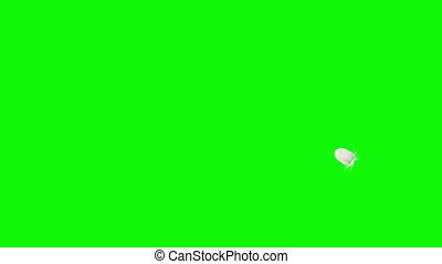 backgrounds., bodem, overzicht., vliegen, het vallen, black , veer, groene