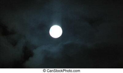 baikal., volle, hemel, meer, maan, nacht