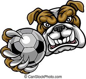 bal, bulldog, voetbal, vasthouden, voetbal, mascotte