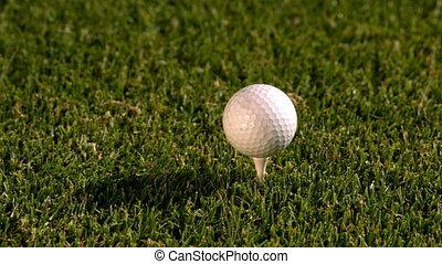 bal, club, tee, golf, van, het slaan