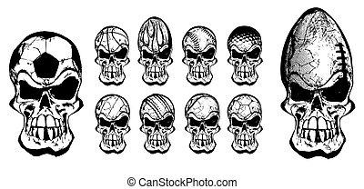 bal, schedels