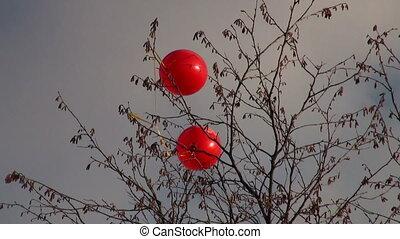 ballons, wind