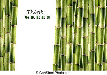 bamboe schiet