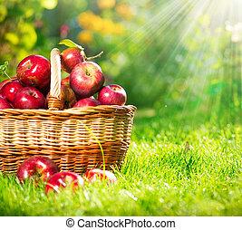 basket., organisch, orchard., tuin, appeltjes