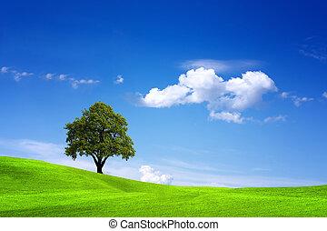 beauty, natuur