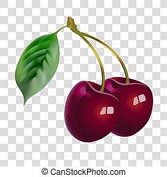 beauty., plantkunde, fruit., gezondheid