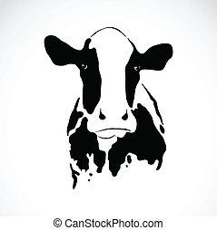 beeld, vector, koe