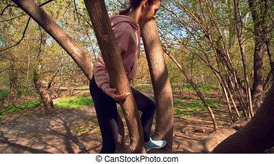 beklimming, vrouw, boompje, op