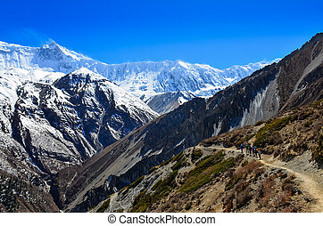 berg, groep, backpacking, himalayas, trekkers, landscape