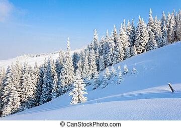 berg landschap, winter