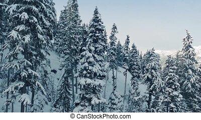 berg, oplopend, bovenkant, besneeuwd