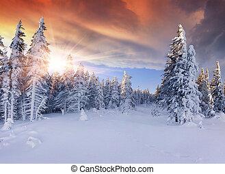 bergen., dramatisch, mooi, zonopkomst, hemel, rood, winter
