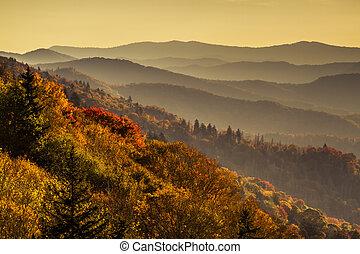bergen, groot, rokerig, park, herfst, nationale