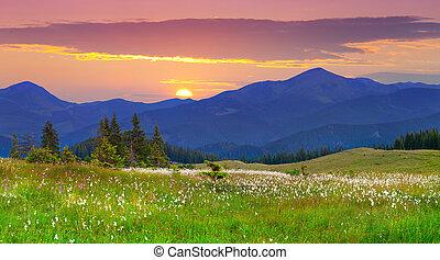 bergen., landscape, mooi, zonopkomst, zomer