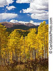 bergen, rotsachtig, colorado, landscape, herfst